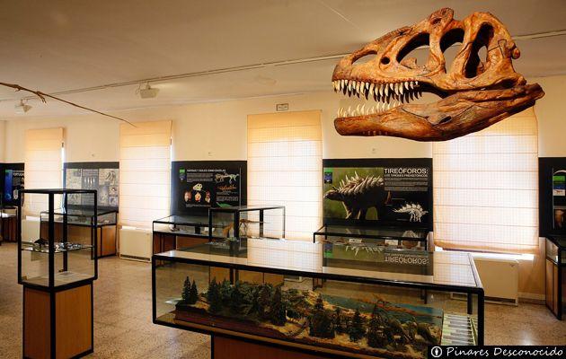 Resultado de imagen de museo dinosaurios salas de los infantes
