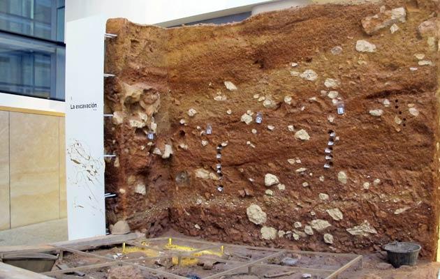 museo de atapuerca burgos