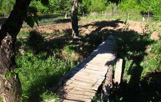 Pequeñas huertas - Aldeanueva de la Serrezuela
