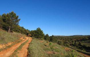 El Sendero del Arroyo de la Serrezuel - Aldehorno