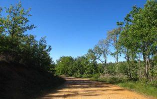 Sendero El Arroyo de la Serrezuela - Aldeanueva de la Serrezuela