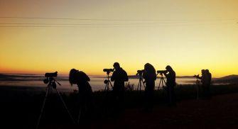 Observación del Lobo Iberico - Zamora