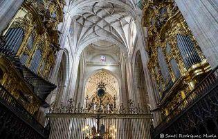 Órganos - Catedral de Segovia