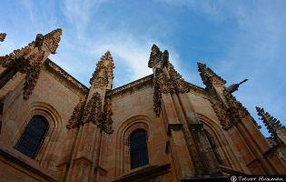 Pináculos - Catedral de Segovia