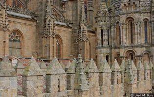 Almena y Torre del Gallo - Catedral vieja de Salamanca