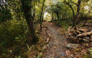 Camino hacia Cueva Palomera en Ojo Guareña