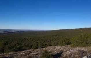 Espacio Natural Desfiladero de la Yecla y Sabinares del Arlanza