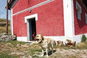 Lugar ideal para descansar en contacto con la naturaleza - Casa rural La Estación del Río Lobos