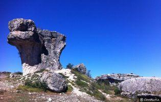 Senderos - Monumento Natural de las Tuerces