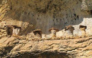 Colmenas - Cañón del Río Lobos