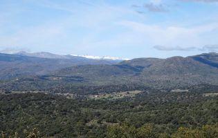 Senderos Ávila - Navalmoral de la Sierra