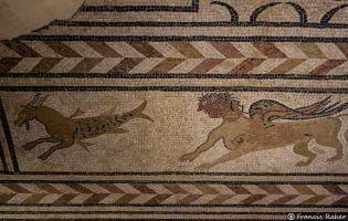 Mosaico romano de San Gil en Medinaceli