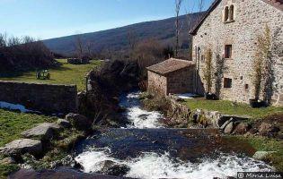 Río Camesa - Salcedillo