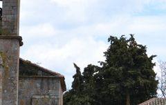 Iglesia de Barcenilla de Pisuerga