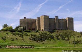 Fortaleza de Montealegre de Campos