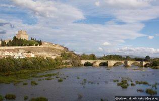 Castillo y Puente de Ciudad Rodrigo