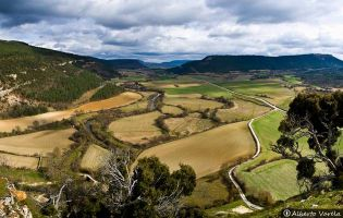 Valle de Losa