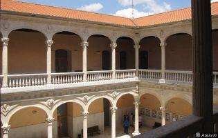 Palacio de los Dueñas - Medina del Campo.