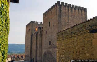 Castillo de los Velasco - Medina de Pomar