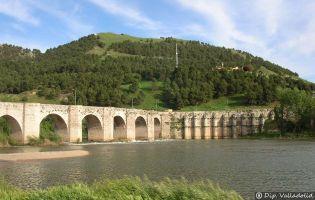 Puente - Cabezón de Pisuerga