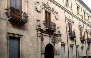 Palacio de Rodríguez de Figueroa - Salamanca