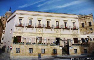 Palacio de Castellanos - Salamanca