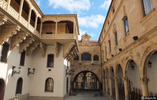 Palacio de la Salina - Salamanca