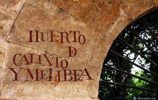 Huerto de Calixto y Melibea