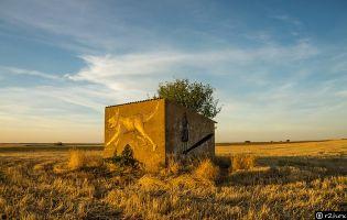 Grafisti Parsec - Castrogonzalo