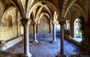 Monasterio de Santa Cruz - Ribas de Campos