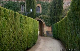 Monasterio de San Polo | Soria