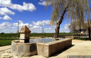 Caño - Támara de Campos