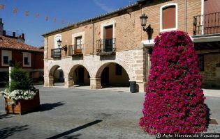 Plaza Mayor - Herrera de Pisuerga