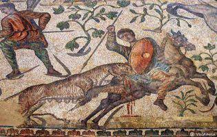 Mosaicos romanos - Palencia