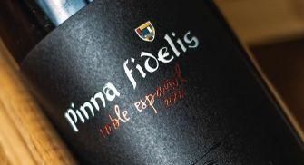 Visita Bodegas Pinna Fidelis - Peñafiel