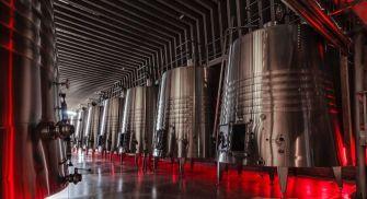 Degustación vinos Bodegas Portia