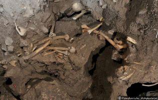 Yacimiento del Mirador - Atapuerca
