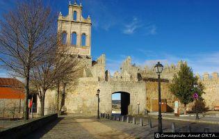 Puerta del Carmen - Ávila