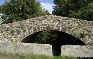 Puente medieval - Truchas