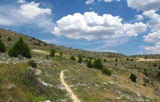Senda del Barranco de la Hoz y El Cañón de Valdehornos - Arroyos del Duratón