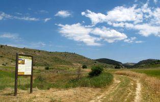 Senda Barrancos del Duratón - Senderismo Segovia