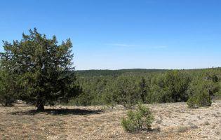 Senda de las Gullurías / Cañón del Río Lobos