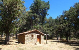 Sabinar en Soria