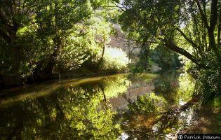 Río Arlanza - Covarrubias