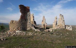 Ruinas de Nuestra Señora de la Llana - Cerezo de Río Tirón