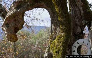 Camino de los Prodigios - Villanueva del Conde