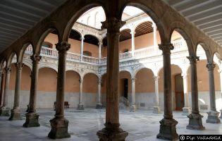 Palacio de los Dueñas - Medina del Campo