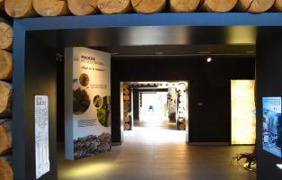 La Casa de la Madera y el Comunero de Revenga - Exposición