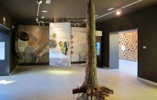 La Casa de la Madera y el Comunero de Revenga - Viajar con niños - La Casa de la Madera - Burgos