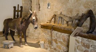 Museo Rofríguez Bustos Torquemada